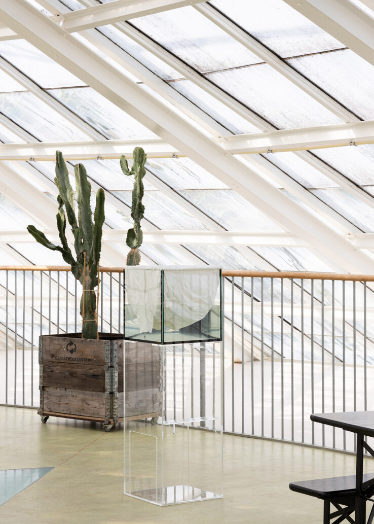 Richard Frater, Stop Shell (ghost fishing version) (2018), installation view in the Greenhouses in The Botanical Garden. Photo: Mikkel Kaldal.
