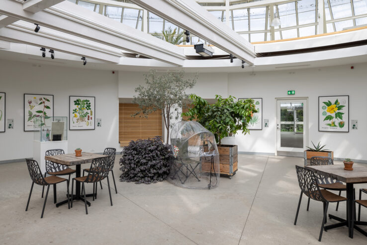 Maximillian Schmoetzer, Me and you (2018), installation view in the Greenhouses in The Botanical Garden. Photo: Mikkel Kaldal.