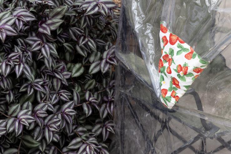 Maximillian Schmoetzer, Me and you (2018), detail, the Greenhouses in The Botanical Garden. Photo: Mikkel Kaldal.